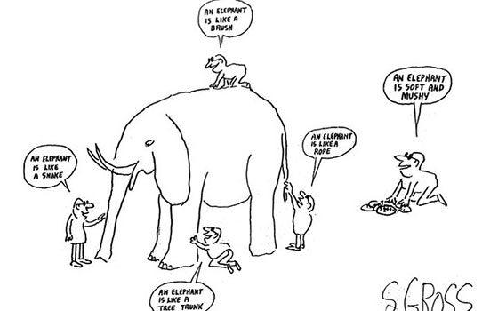 analogia elefante