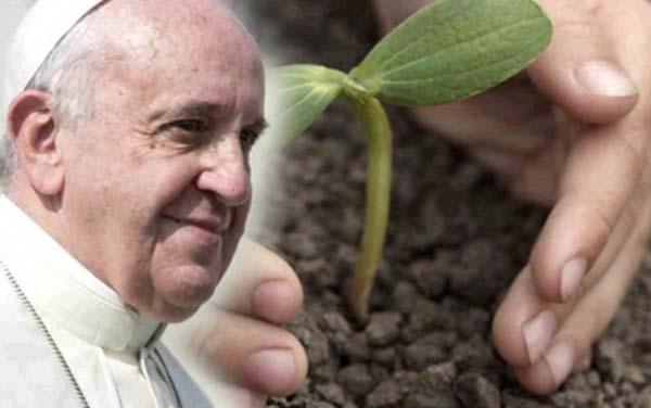 pope laudato