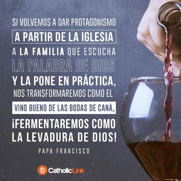 La familia puede convertirse en buen vino | Papa Francisco