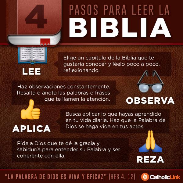 Infografía: 4 pasos para leer la Biblia