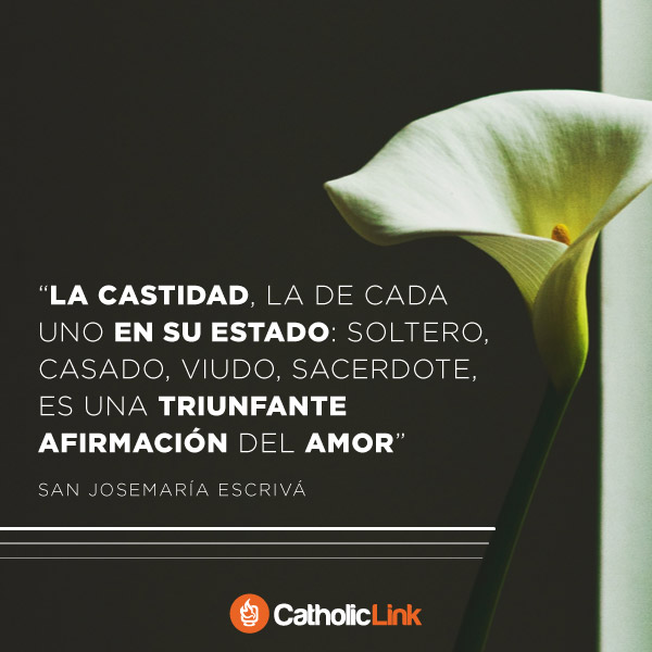 La castidad es una afirmación del amor | San Josemaría Escrivá