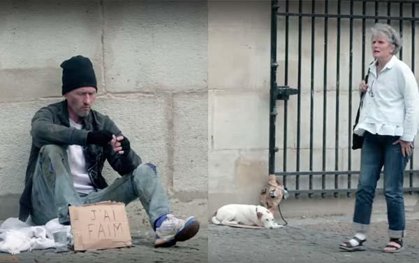 Animales, A veces preferiríamos ser tratados como animales. Impactante experimento social