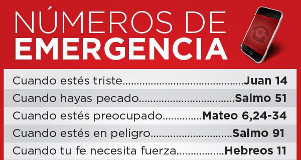 Infografía: Números de emergencia en la Biblia | Catholic-Link