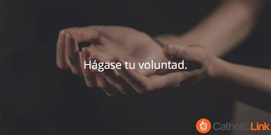 tu-voluntad