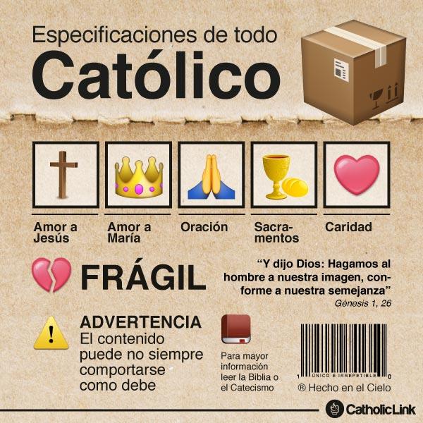 Infografía: Especificaciones técnicas de todo católico