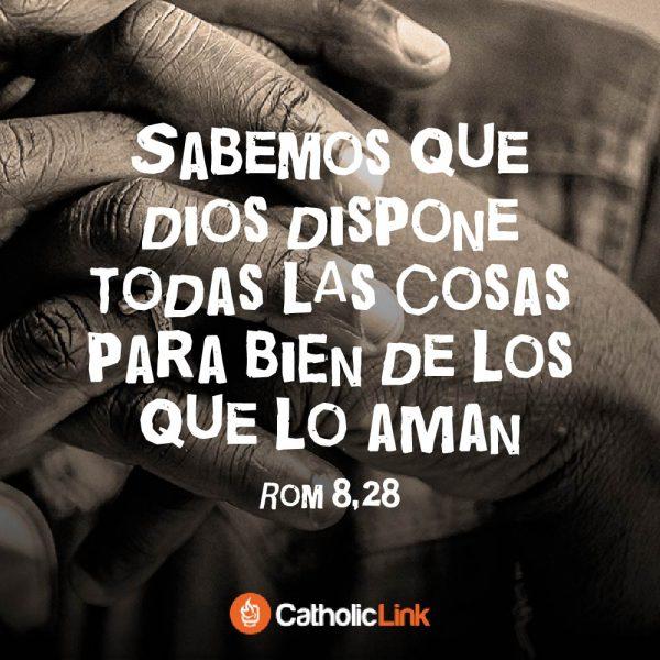 Dios dispone todo para bien de los que lo aman