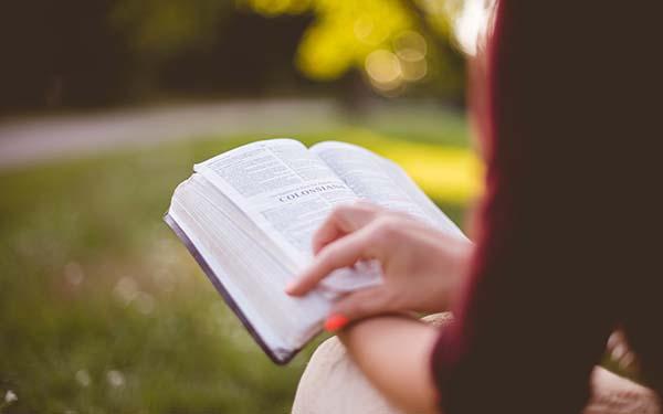Evangelio, 3 reflexiones del Evangelio diario que no te puedes perder (Iniciativas geniales)