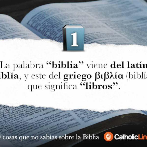 Galería: 10 datos sobre la Biblia que no conocías