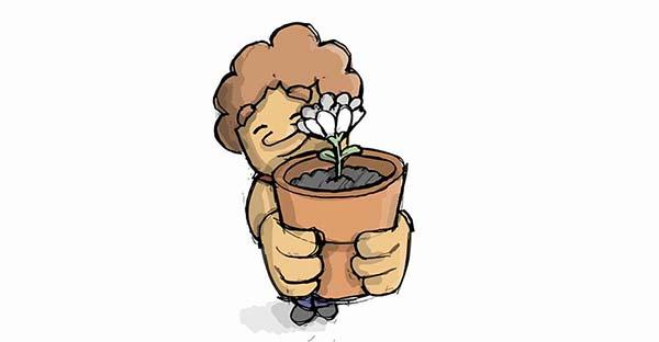 Ecológico, El valor simbólico, ecológico y cristiano de tener una plantita y cuidarla