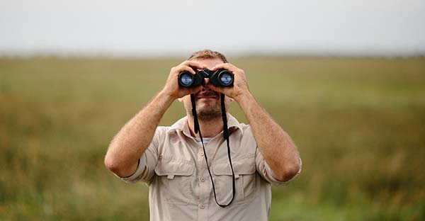 , Con respecto a las cosas de la fe, ¿eres espectador, mensajero o testigo? (comentario al Evangelio)