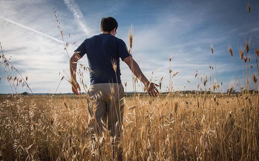 Dios, ¿Cómo seguir dando gloria a Dios cuando todo en mi vida sale mal?