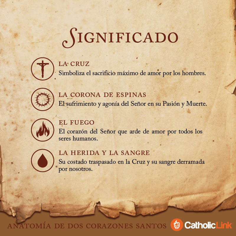 Galería: Anatomía de dos corazones santos | Catholic-Link