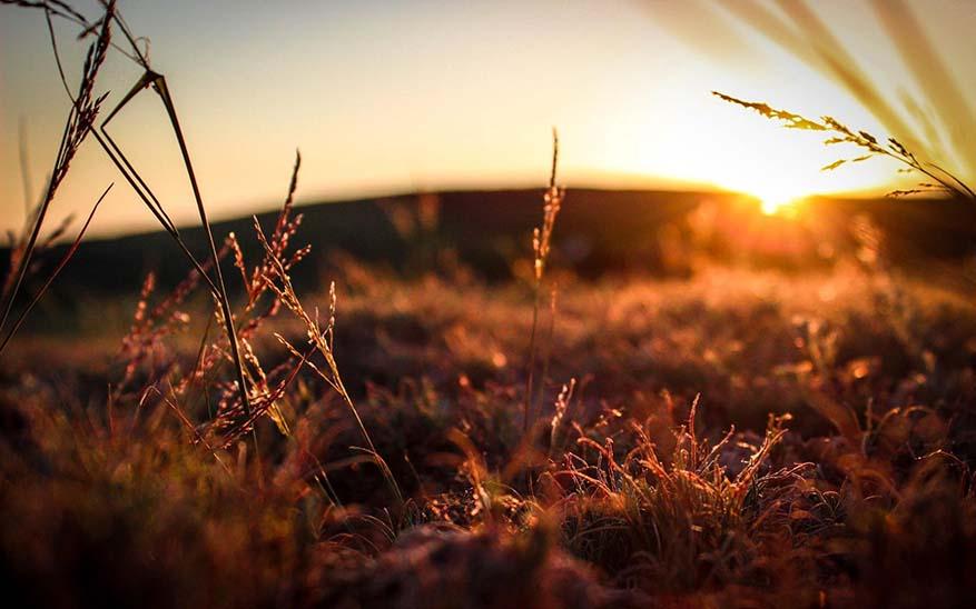 versículos, 10 versículos de la Biblia que te levantarán el ánimo