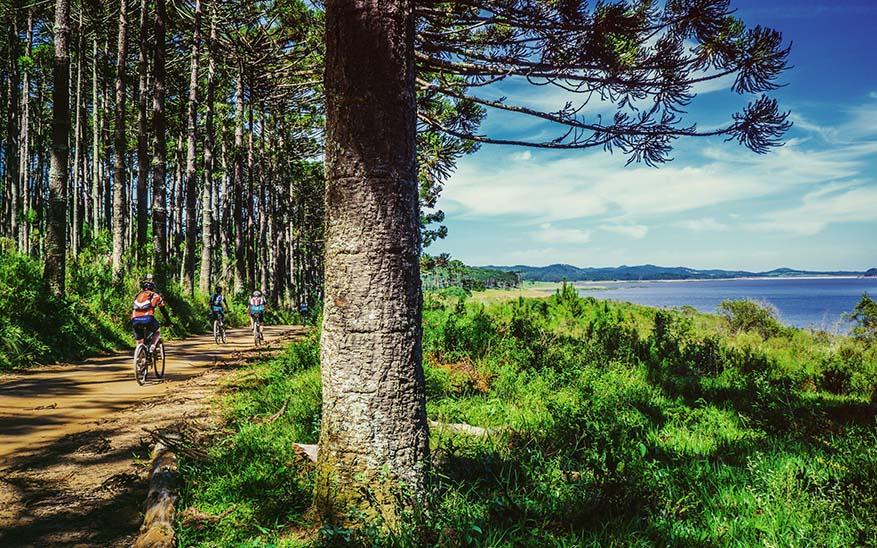 naturaleza, El paseo en bicicleta que terminó por darme las 7 mejores reflexiones sobre la vida y el ejercicio