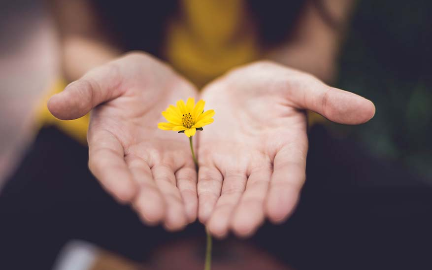 regalos espirituales, 6 regalos espirituales que todos podemos pedirle a Dios esta Navidad