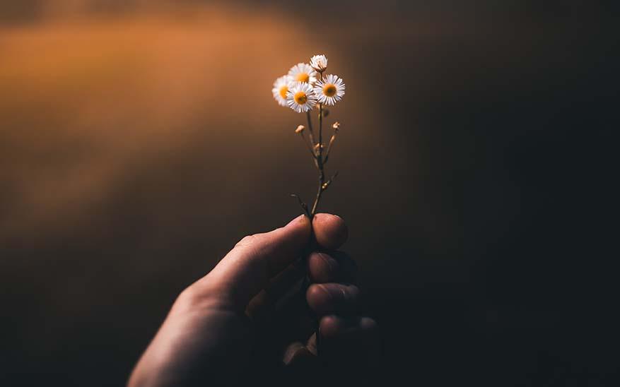 amor, ¿Por qué Dios no me da lo que quiero a pesar de que soy una buena persona?