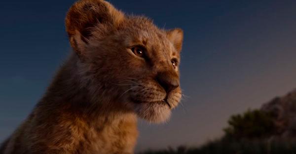 El Rey León, Película recomendada: «El Rey León»