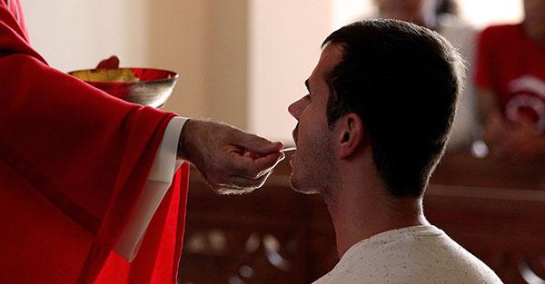 comunión, Serie plan de vida espiritual: la comunión como la manifestación más grande de amor