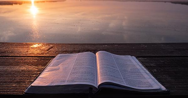, Señor, ayúdame a entender mejor tu Palabra para poder amarte (comentario al Evangelio)