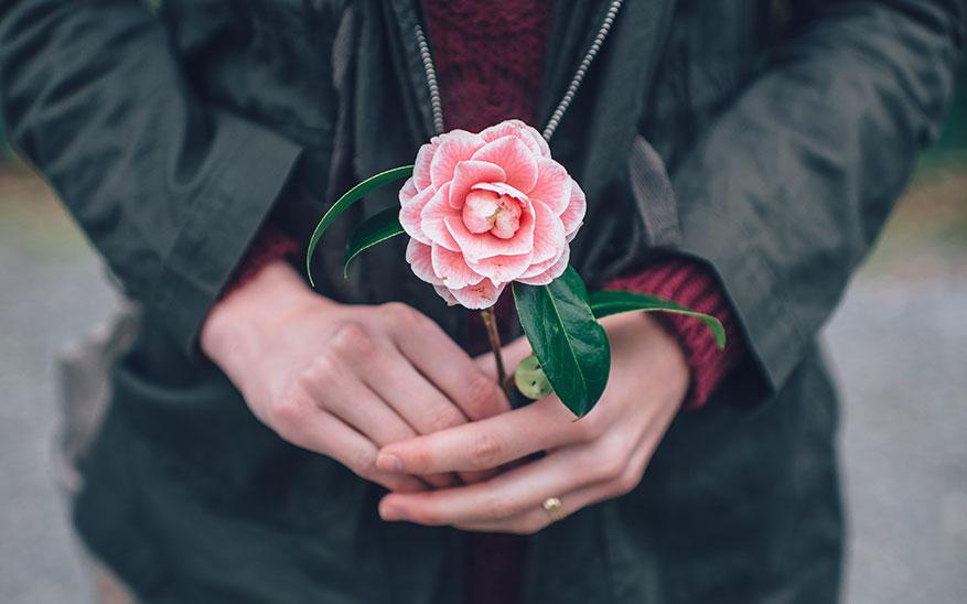 soltería, «No me digas que los tiempos de Dios son perfectos»: Reflexiones sobre la soltería