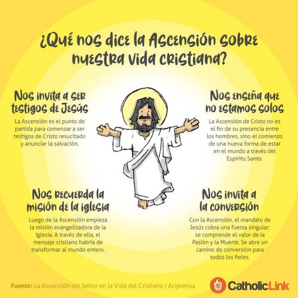 Infografía: ¿Qué nos dice la Ascensión sobre nuestra vida cristiana?