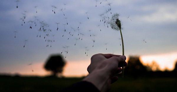 tristeza, Querida tristeza: me has enseñado tanto, pero hoy llegó la hora de despedirnos