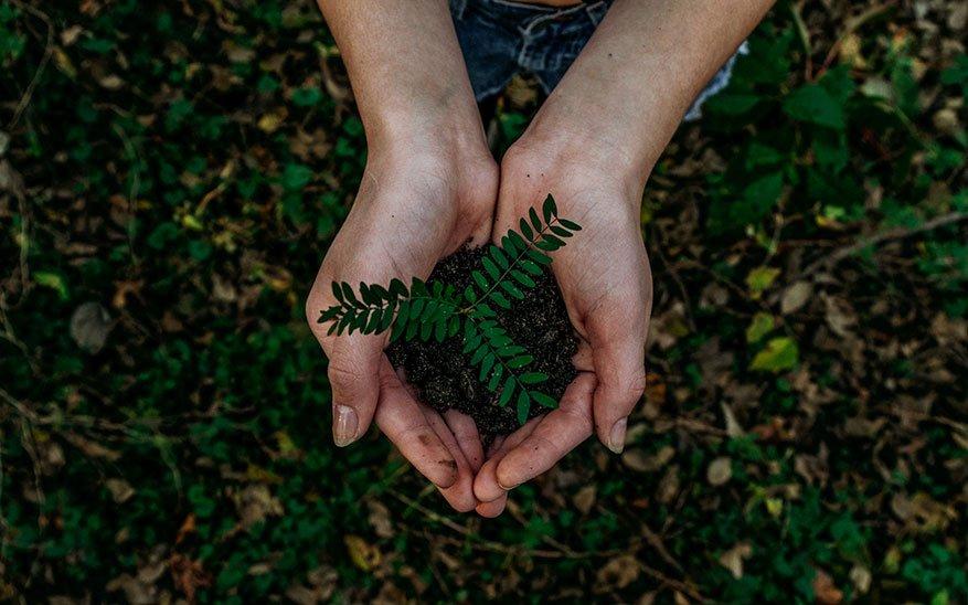 7 iniciativas para ayudar a cuidar el medio ambiente
