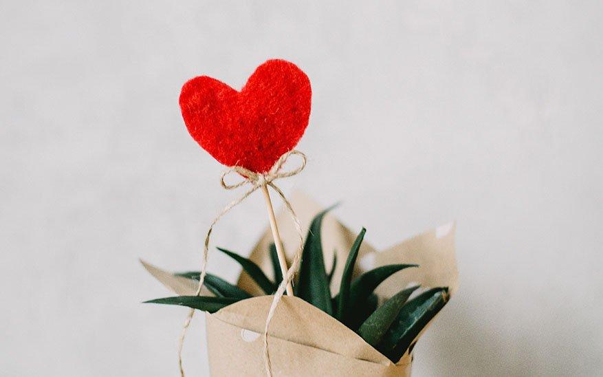 amor y felicidad, ¿Por qué nos cuesta tanto vivir el amor? 3 puntos para entender que sin él no hay felicidad