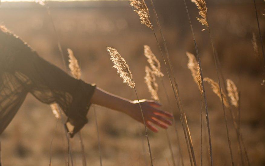 salud mental, 5 consejos para cuidar tu salud mental y emocional de la mano de Dios